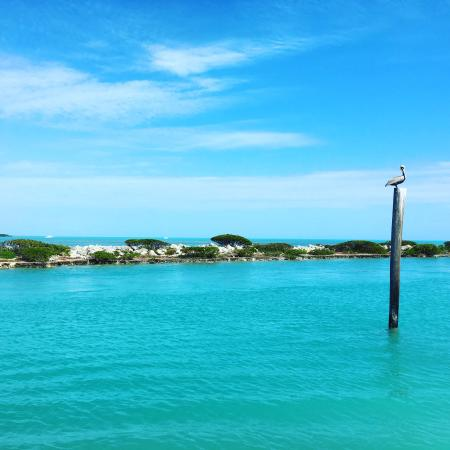 Hawks Cay Resort: photo2.jpg