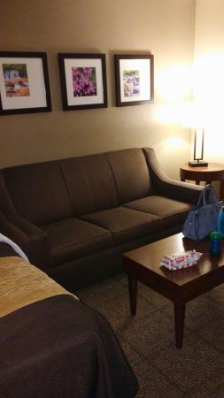 Comfort Inn & Suites Peachtree Corners: 20160311_193942_large.jpg