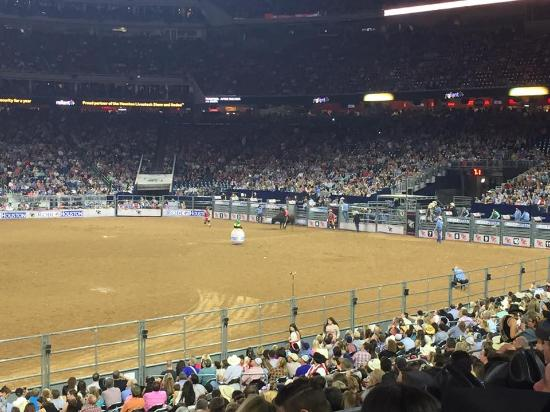 ‪Rodeo Houston or Houston Livestock Show and Rodeo‬