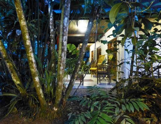 Hotel Magellan Inn: The inn at night, a view of the room patios.