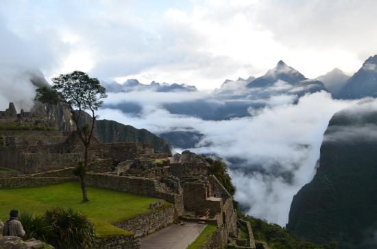 Peru Path