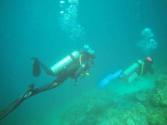 W Divers Coron