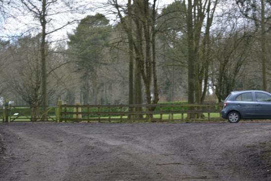 Whipsnade Tree Cathedral: Car Park-not overly spacious if a busy day