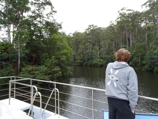 Arthur River, Australia: View from the top