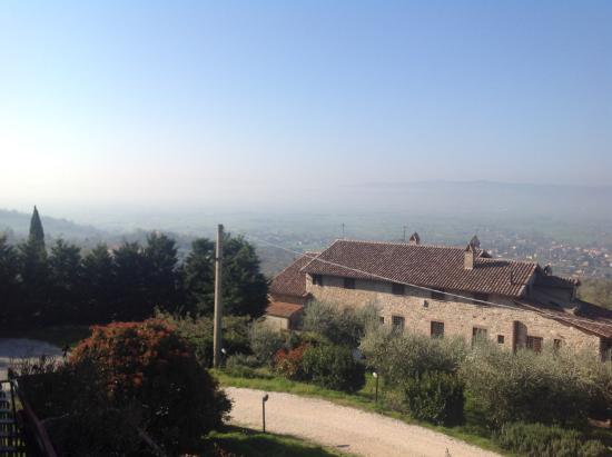 Agriturismo Colle degli Olivi Photo