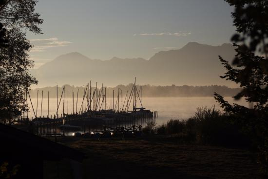 Zum Fischer am See: Утренний туман на озере