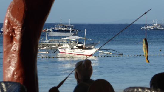 Alona Tropical Beach Resort: Utsikt från restaurangen
