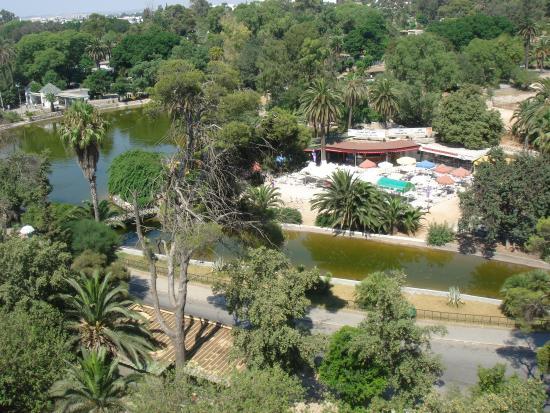 Hotel Les Ambassadeurs : Le jardin du Belvédère vu d'une chambre