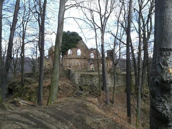 Zamek Stary Ksiaz