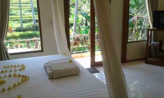 Junjungan Suite Villa: Delux room
