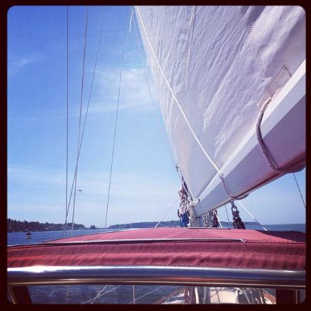 Sail Casco - Tours: Looking ahead.