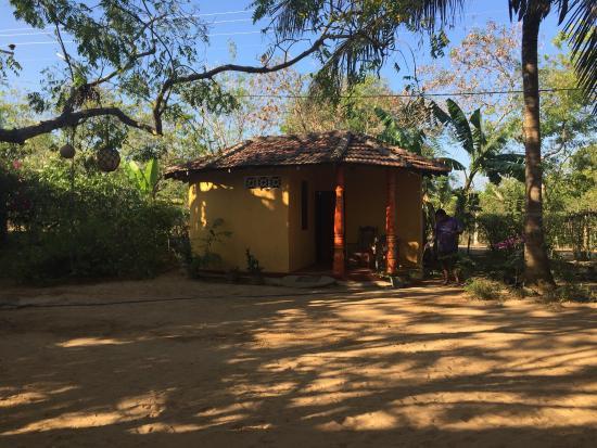 Temple Flower Guest House: Bellissima e sorprendente guest house. Ci siamo stati io e la mia compagna ed abbiamo avuto tutt
