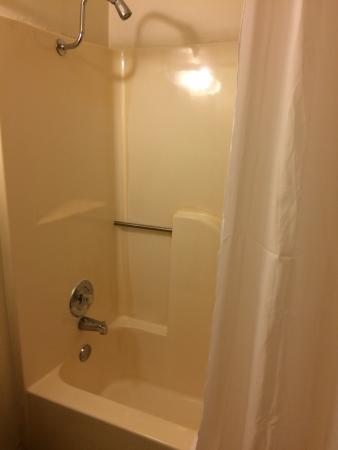 Willow Tree Inn: Very clean shower with extra tall shower head and brand new clean white curtain.
