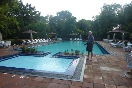 Nice pool and gardens