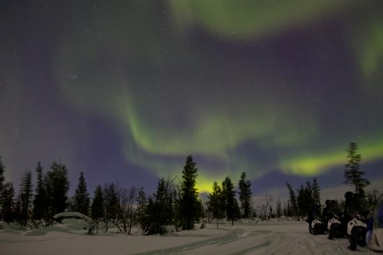 Kiruna Guidetur - Day Trips: Northern Lights Snowmobile in Sled