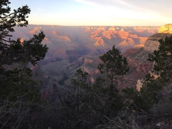 About Maswik Lodge Maswik Lodge is located in a wooded area near the rim of the Grand Canyon, inside the park. If you're not up to walking, you can catch a free shuttle directly in front of the lodge that will take you right to the rim.