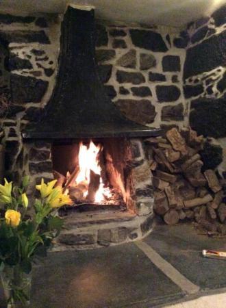 Tregaddra Farm B&B: The open log fire