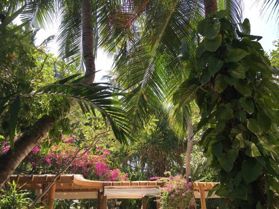 Kuramathi: Outstanding holiday island