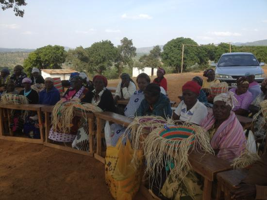 Provincia Orientale, Kenya: Basket Weavers