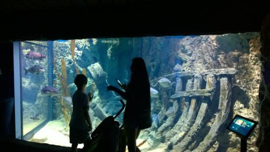 Malta National Aquarium - Miniature of Jesus figure which stand ...
