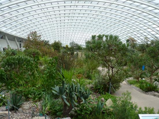 National Botanical Garden Of Wales Picture Of National Botanic Garden Of Wales Llanarthney