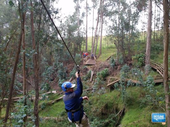 photo2.jpg - Picture of Skyline Eco-Adventures Zipline