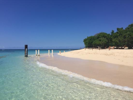 Amiga Island Experience Review