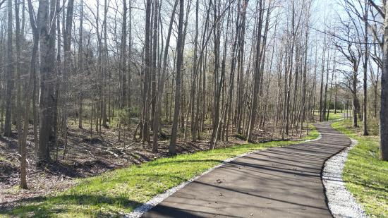 Parkers Crossroads, TN: Back of the trail at Stop 7