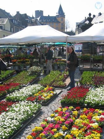 Mayen, Tyskland: =:> Blumenstände auf dem Marktplatz