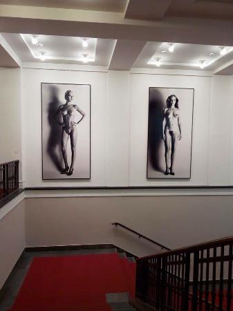 Muzeum fr fotografie/helmut newton foundation 8