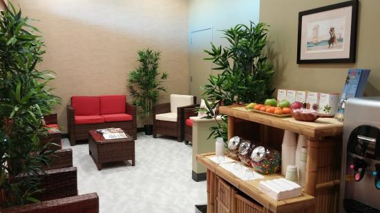 Hawaiian Experience Spa: Lounge
