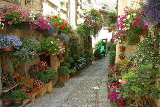 La Verna, Itália: Umbria, a pocos km de toscana, una belleza desconocida