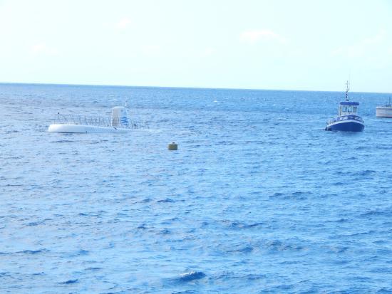 George Town, Gran Caimán: Spot the Sub surfacing