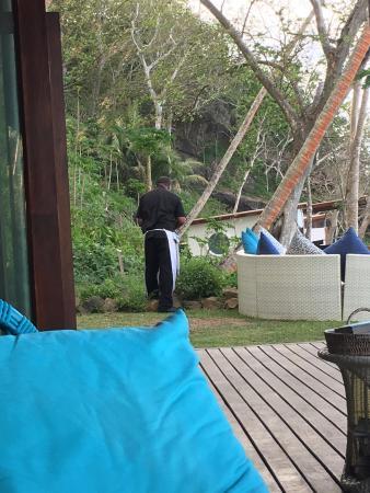 Vanua Levu, Fiyi: the chef picking herbs from their garden