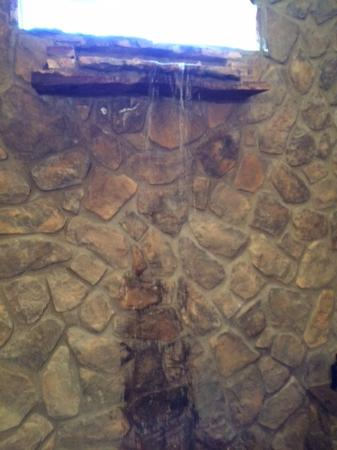 """The Shadowcatcher Bed & Breakfast: When they say """"waterfall shower,"""" they aren't kidding."""