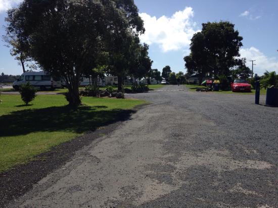 Waitangi Holiday Park : photo1.jpg