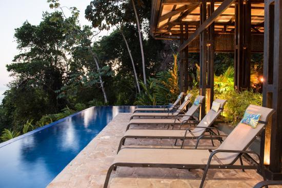 Jungle Blue Restaurant & Bar