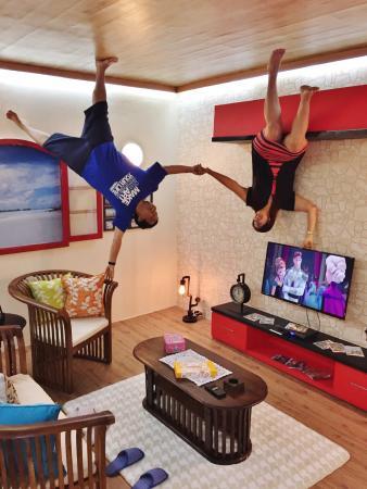upside down world living room