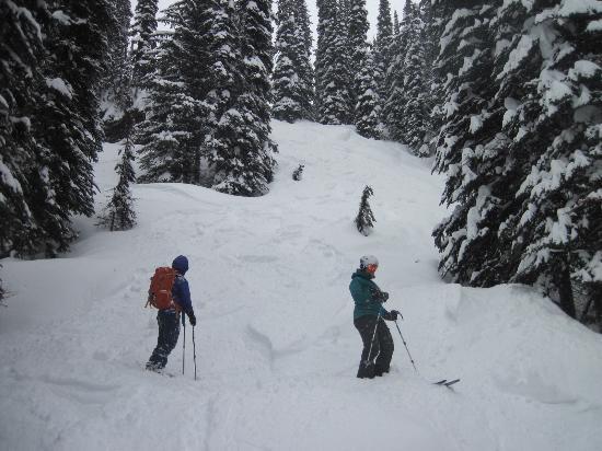Great Northern Snowcat Skiing: Deep powder
