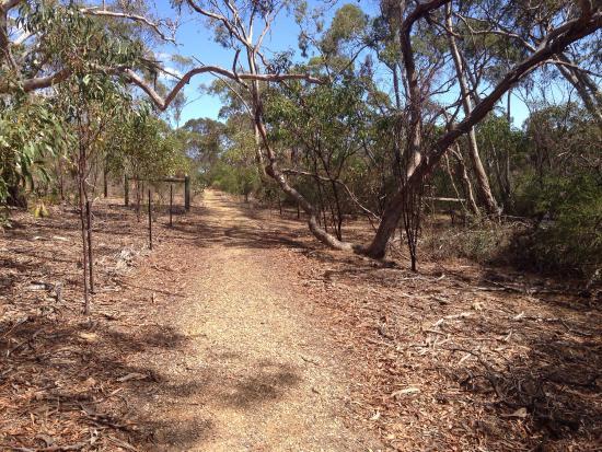 Barossa Valley, أستراليا: Victoria Hill Circuit