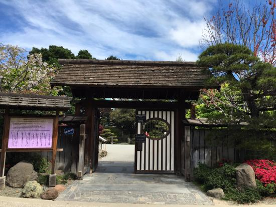 San Mateo, كاليفورنيا: Japanese Garden