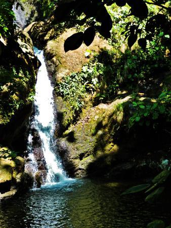 Golfito, Costa Rica: Waterfall Discovery