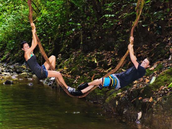 Golfito, Costa Rica: Tarzan Swing