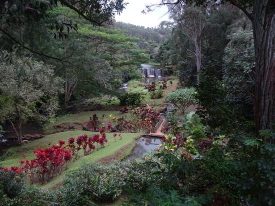 Kilauea, HI: Gardens at the turning point of the loop
