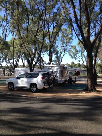 Waikerie Holiday Park: Powered site plenty of shade and decent size