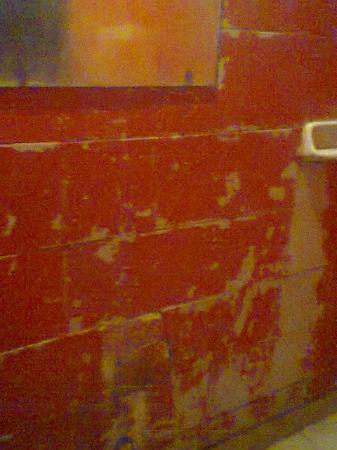 Plaza Hostel : Paredes del baño.