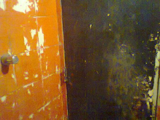 Plaza Hostel : La puerta en malas condiciones (otra vez). Esta es la ducha