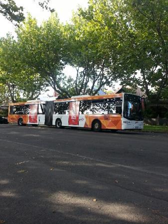 bending bus parked near my middle park house for f1 gp crowd rh tripadvisor co nz