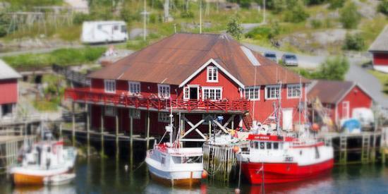 Maren Anna: Rett i et levende fiskevær