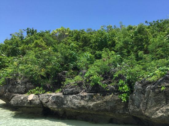 Belle Mare: Sortie en mer
